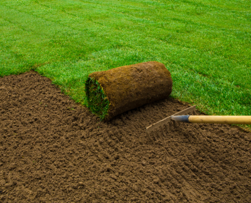 The Landscaping Benefits Of Installing Sod