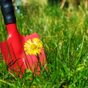 How Does Weed Control Work?